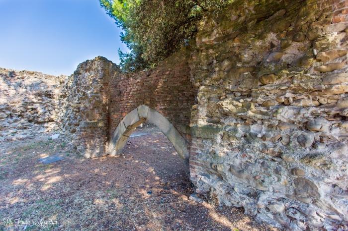 rimini-rovine-romane1
